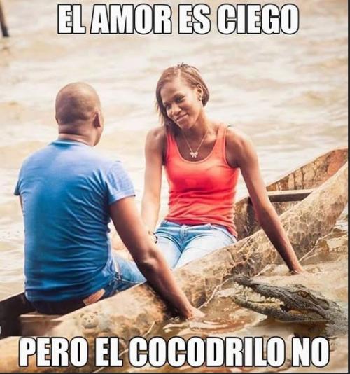 el-amor-es-ciego-pero-el-cocodrilo-no.png