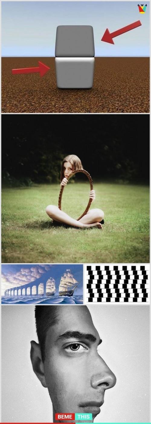 fotos-enganosas-que-te-van-hacer-mirar-varias-veces.jpg