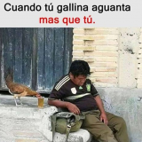 gallina-borracha
