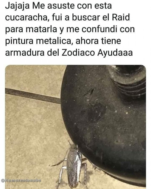 cucaracha con armadura