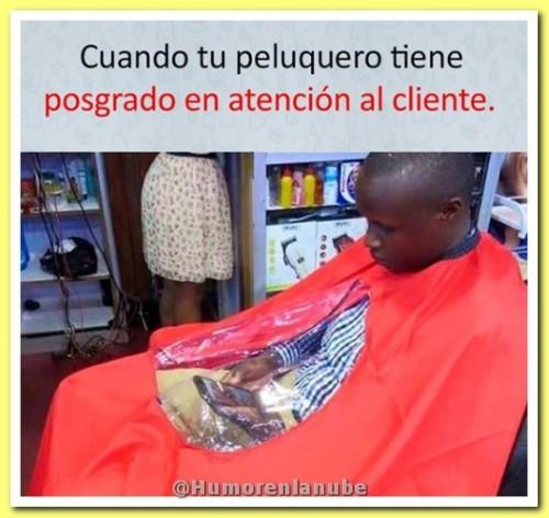 peluquero-con-posgrado.jpg