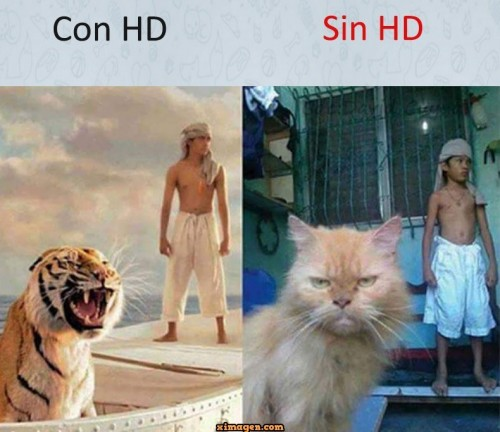 con-hd-y-sin-hd.jpg