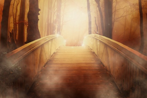 bridge-19513_1920.jpg