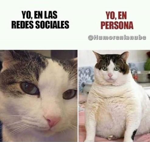 yo-en-las-redes-sociales.jpg