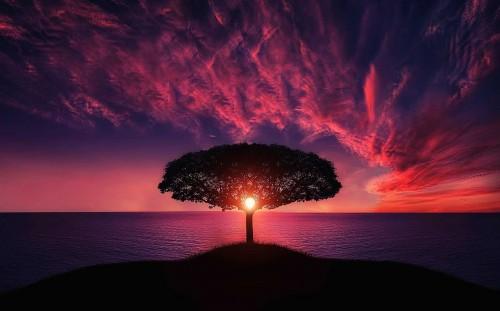 paisajes-hermosos.jpg