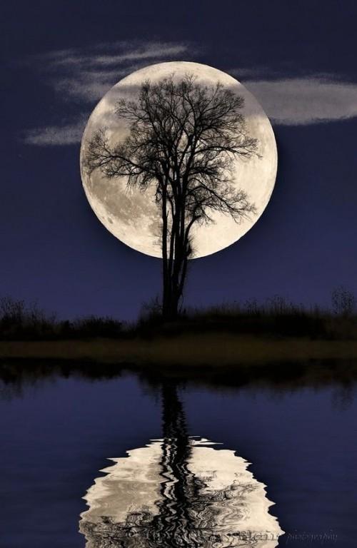 paisaje-luna-llena.jpg
