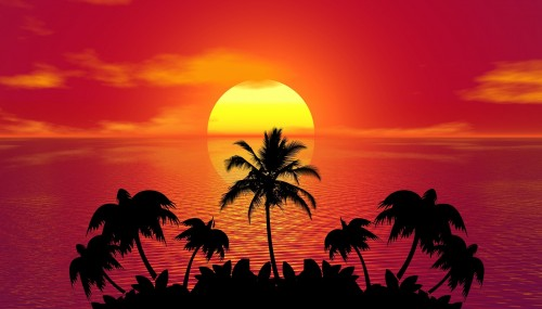 tropical-1651426_1920.jpg