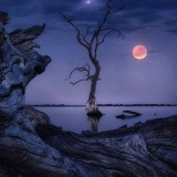 una-noche-estrellada-con-luna-sangrienta