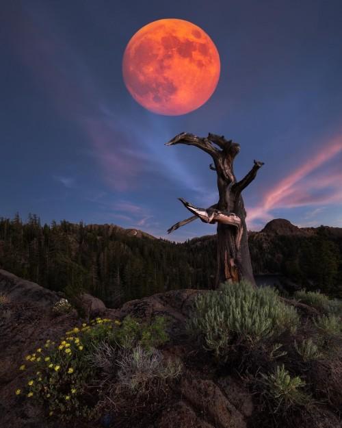 paisaje-con-luna-llena.jpg