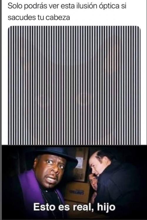 Solo podras ver esta ilusion optica si sacudes tu cabeza