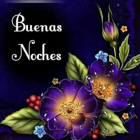 buenas-noches-con-flores.jpg