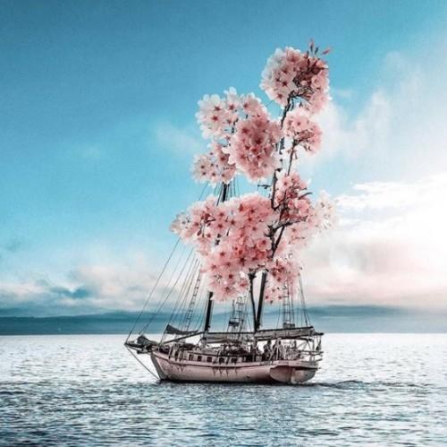 barco de flores