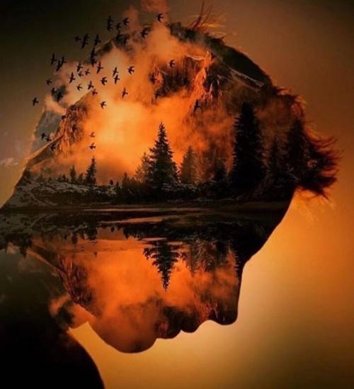 cabeza y naturaleza