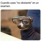 meme-Cuando-usas-no-obstante-en-un-examen