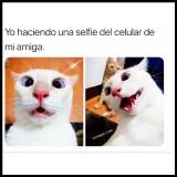 Una-selfie-con-el-celular-de-mi-amiga