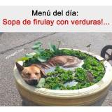 el-meme-de-la-sopa-de-firulay-con-verduras