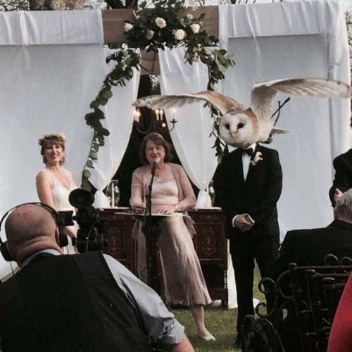 foto-de-boda-con-una-peculiar-ave.jpg