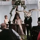 foto-de-boda-con-una-peculiar-ave