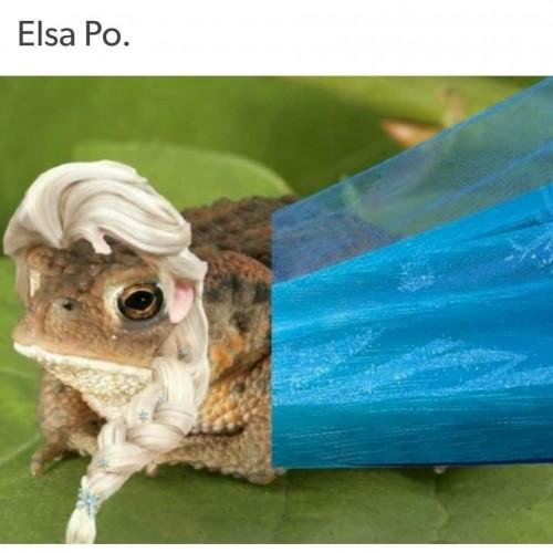 Elsa-Po-meme.jpg