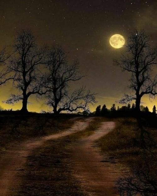 La-luna-ilumina-mi-camino-en-las-noches-oscuras.jpg