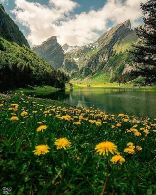 La-naturaleza-es-hermosa.jpg