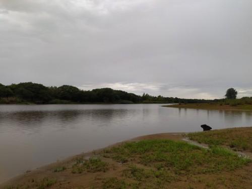 Paisaje-gris-arroyo-lluvia.jpg