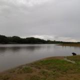 Paisaje-gris-arroyo-lluvia