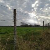 El-campo-alambrado-y-el-cielo-nublado-con-una-luz-alumbrando-los-arboles