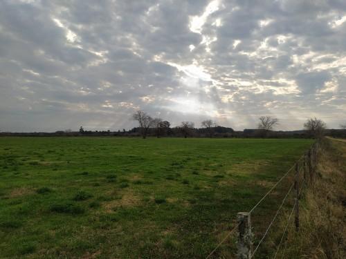 Los-rayos-del-sol-iluminan-los-arboles-en-un-cielo-nublado-de-primavera.jpg