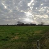 Los-rayos-del-sol-iluminan-los-arboles-en-un-cielo-nublado-de-primavera
