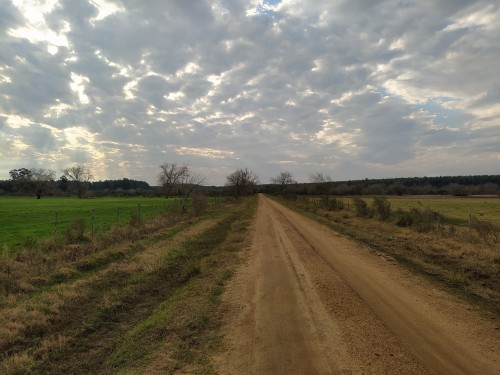 camino-de-tierra-y-colores-de-la-primavera-en-un-atardecer-nublado.jpg