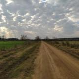 camino-de-tierra-y-colores-de-la-primavera-en-un-atardecer-nublado
