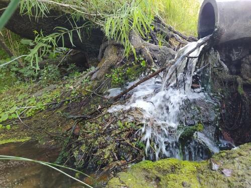 Agua-saliendo-de-un-cano-y-el-verde-de-la-naturaleza.jpg
