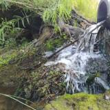 Agua-saliendo-de-un-cano-y-el-verde-de-la-naturaleza