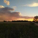 Un-atardecer-espectacular-con-nubes-de-tormenta-en-el-campo-2021
